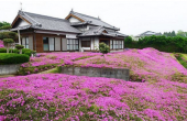 Цветочная ферма