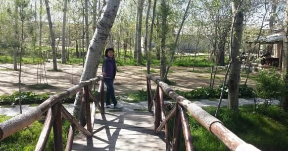 На мостике через речушку