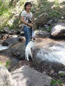 собака на природе у горной речки