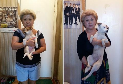 Первый год совместной жизни с собакой.